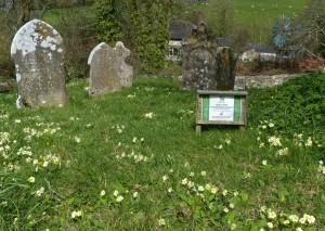 Living Churchyard